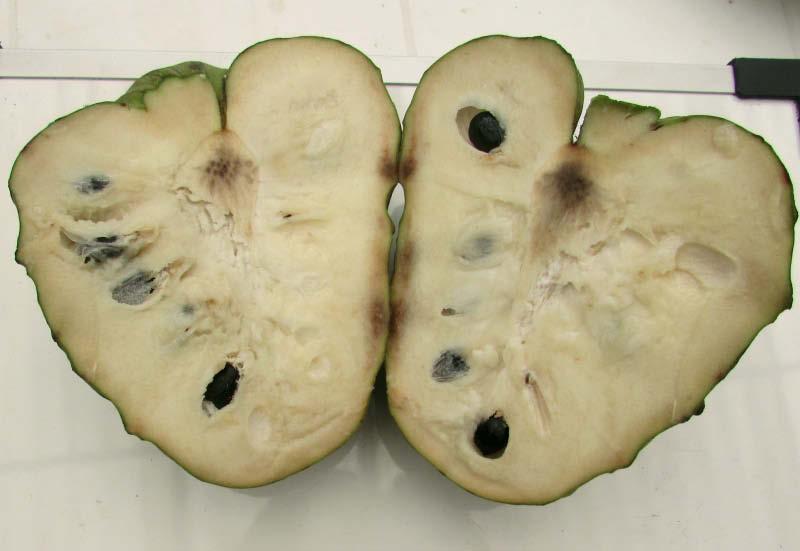 fruto partido chirimoya