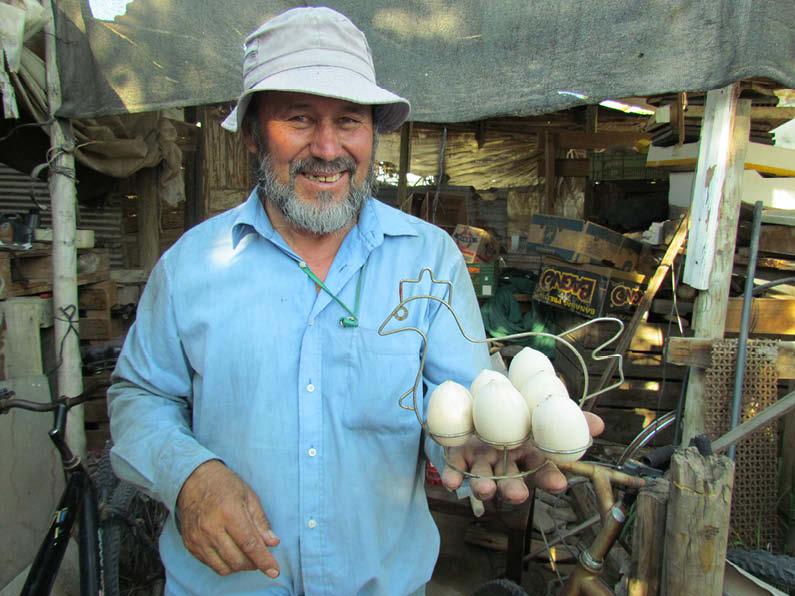 Carlos Castillo zapallo huevo