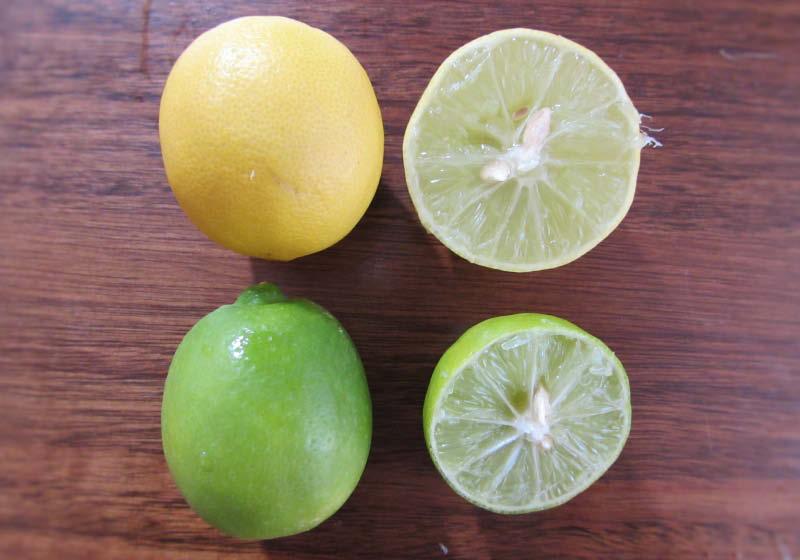 fruto limon sutil