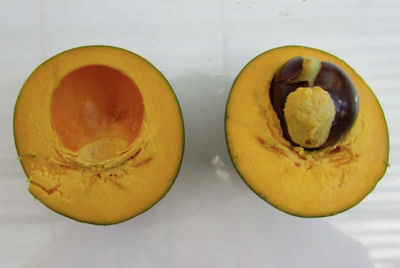 fruto corte partido lucuma