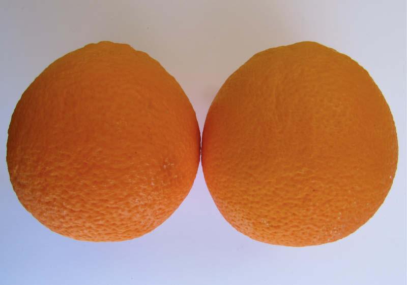 fruto naranja del valle