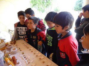 niños mapuche trafkintu
